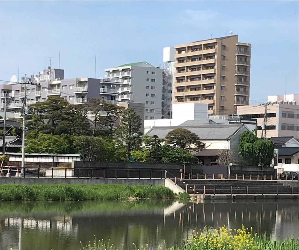 f:id:takejiisan:20190514203737j:image