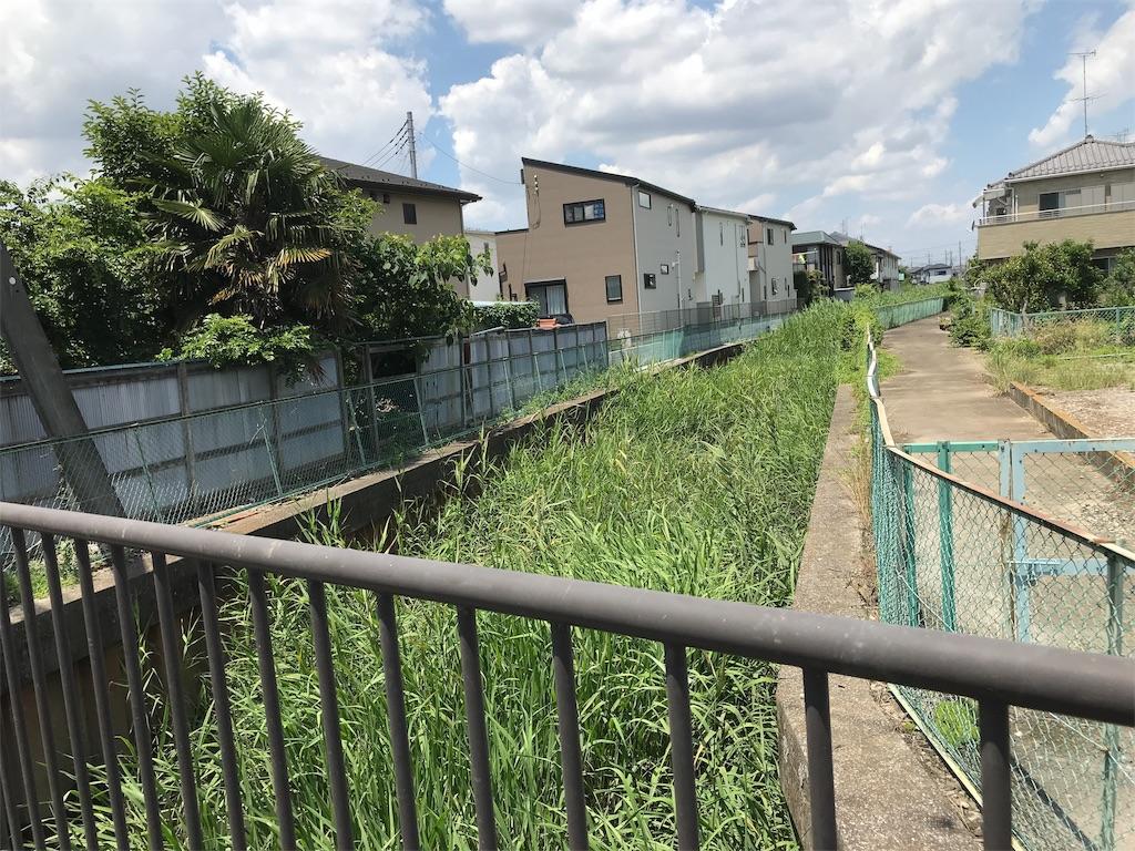 f:id:takejiisan:20190621131937j:plain