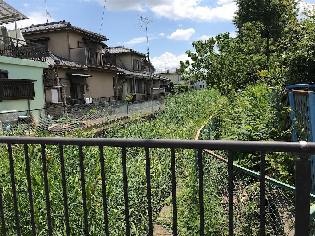 f:id:takejiisan:20190621132000j:plain