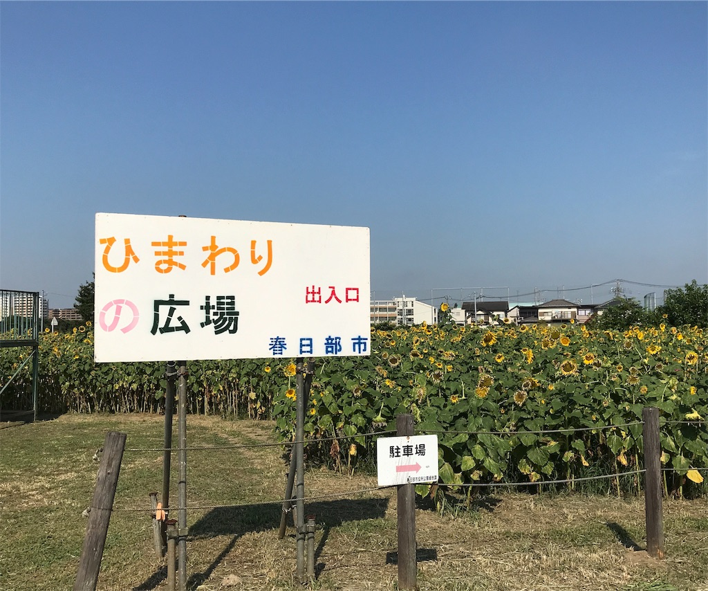 f:id:takejiisan:20190809170247j:plain