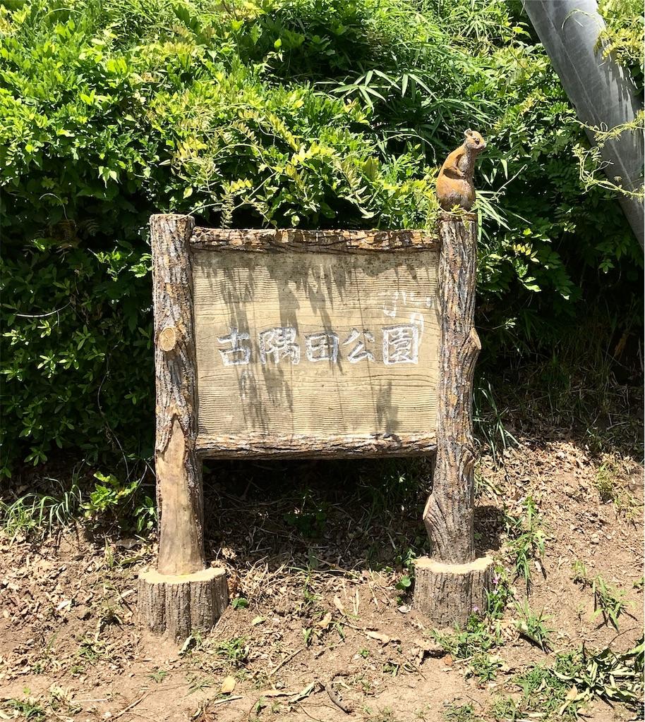 f:id:takejiisan:20190825164729j:plain