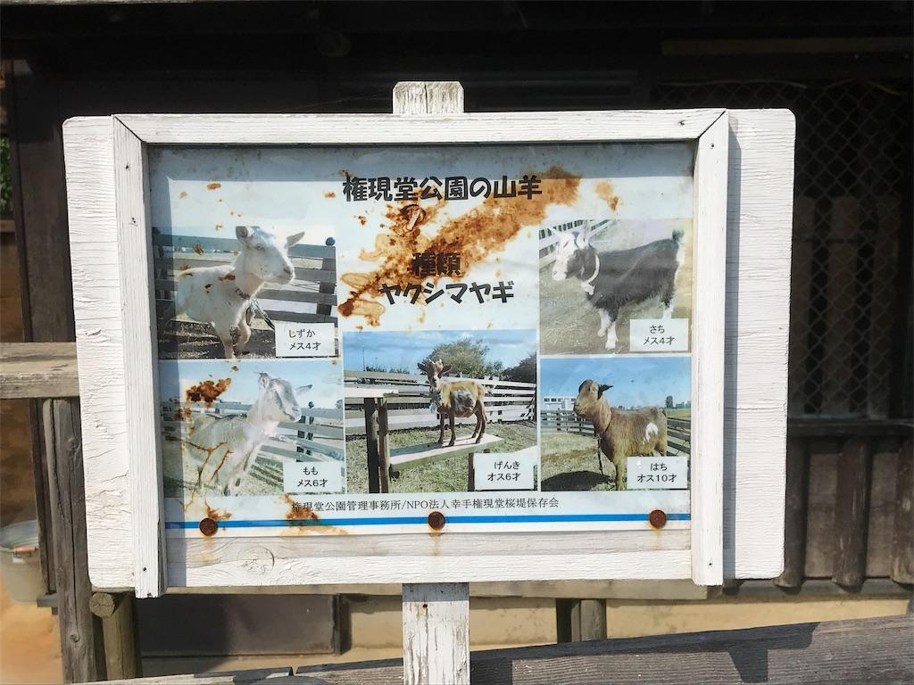 f:id:takejiisan:20191021154821j:image