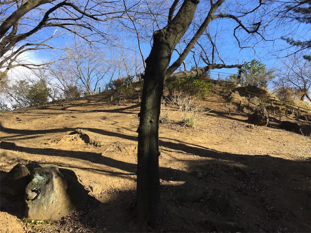 f:id:takekawashino:20170208144734j:image