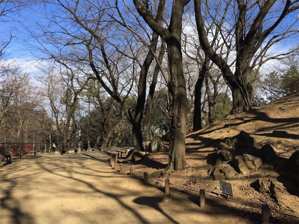 f:id:takekawashino:20170208144741j:image