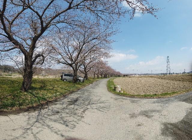 f:id:takemako:20190331163209j:image