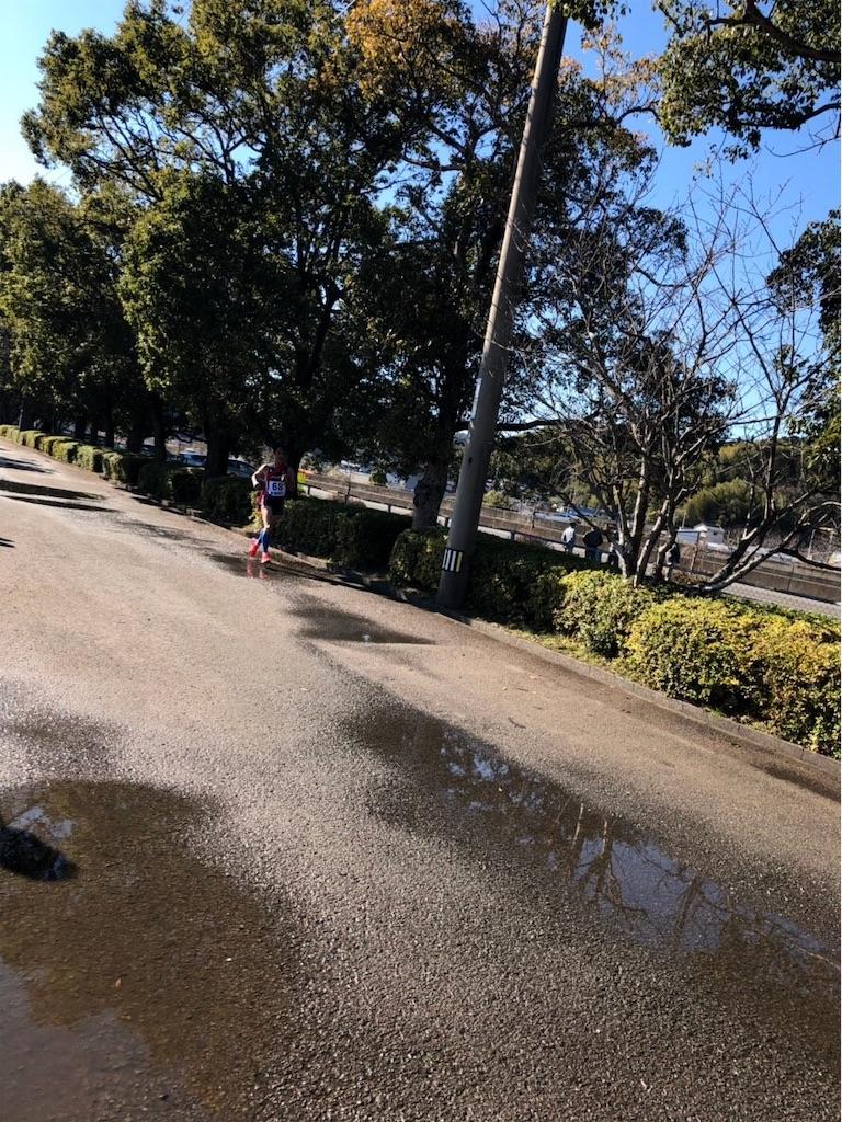 f:id:takemaru-yamasaki:20190116221929j:image