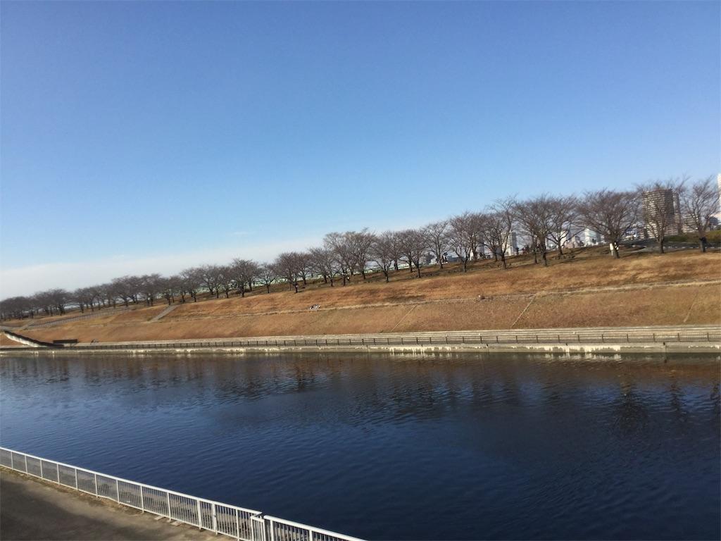 f:id:takemaru-yamasaki:20190125111508j:image