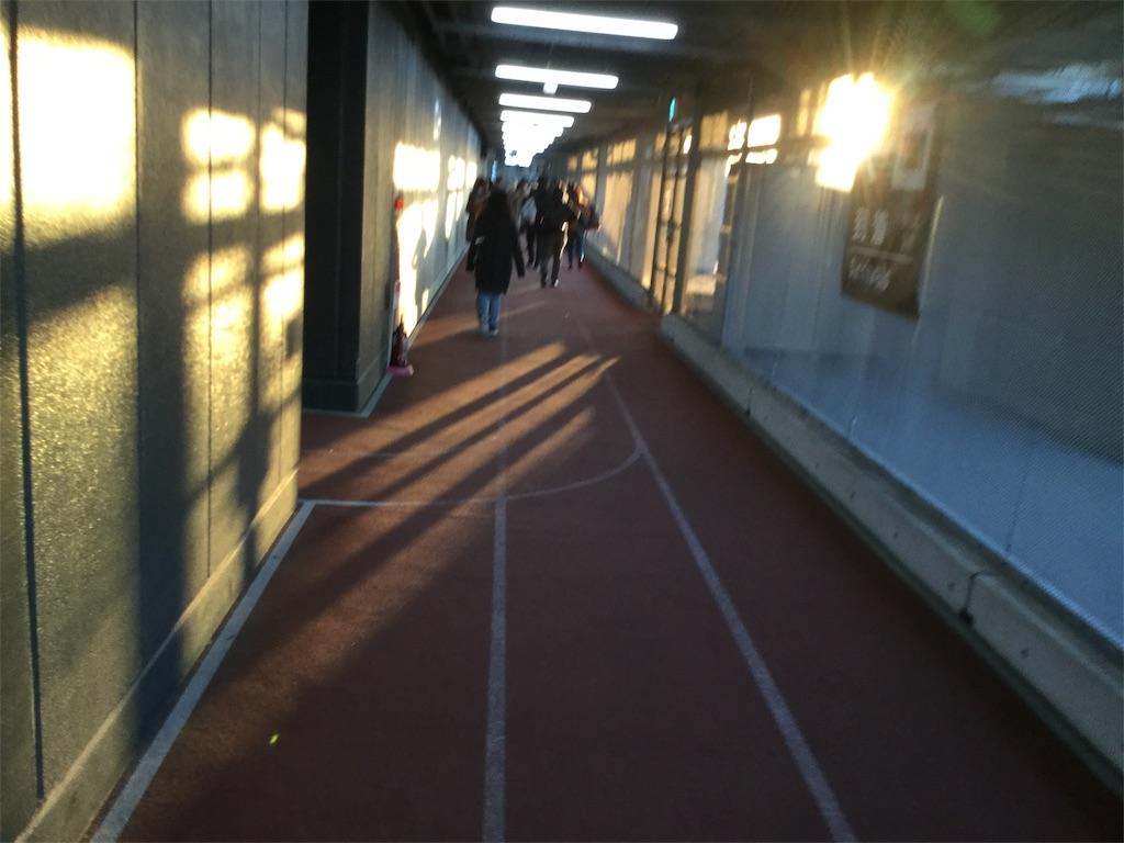f:id:takemaru-yamasaki:20190125222714j:image