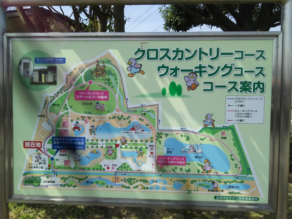 f:id:takemaru-yamasaki:20190327223736j:image