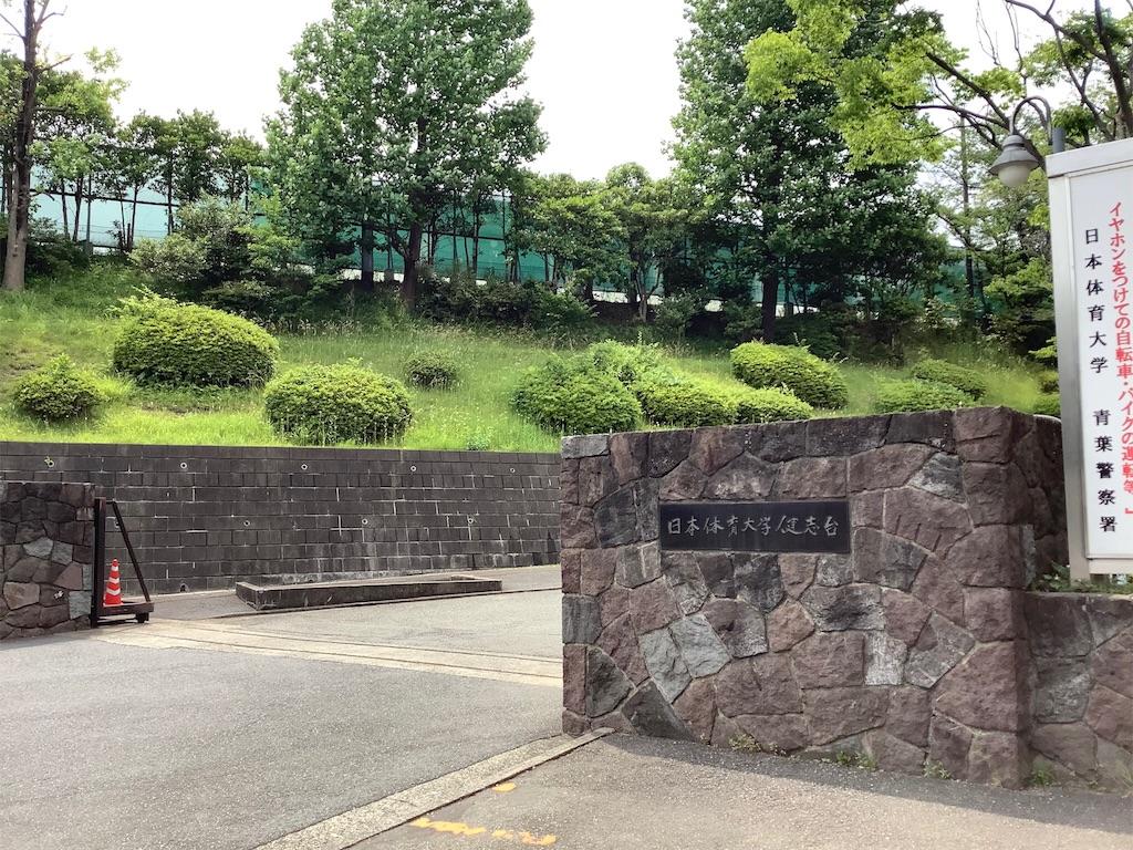 f:id:takemaru-yamasaki:20190604094456j:image