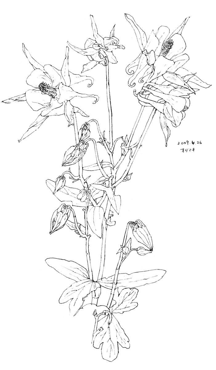 f:id:takemura-toyoko:20200702102538j:plain