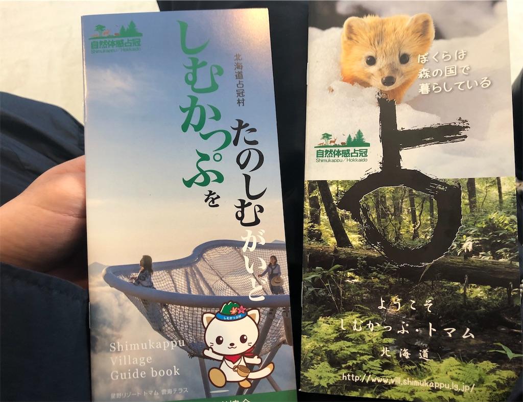 f:id:takenoko1789:20190510100526j:image