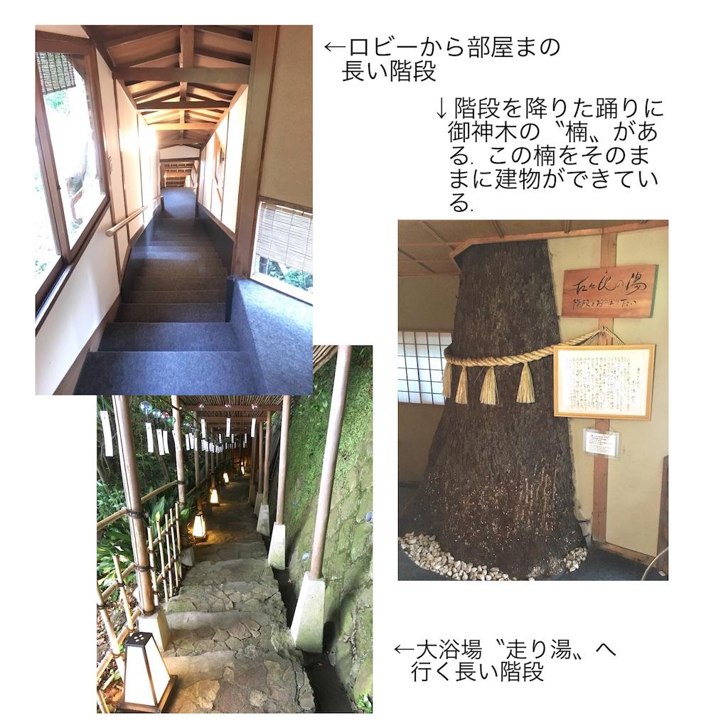 f:id:takeo1954:20170904135951j:image
