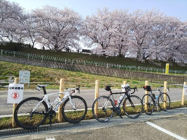 f:id:takeoki:20180402050244j:image