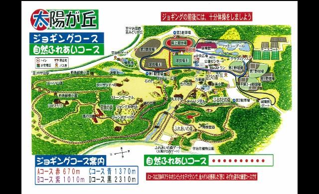 f:id:takeoki:20190131085528j:image
