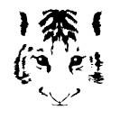f:id:takeru-c:20090509103020j:image