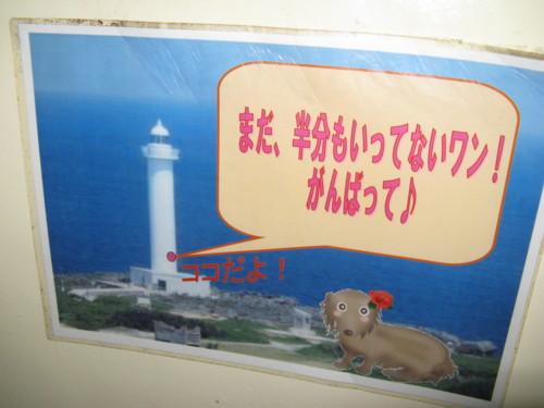 f:id:takerunba:20080919122150j:image