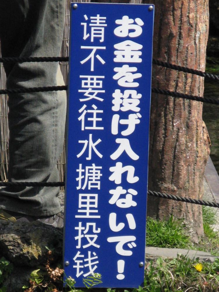f:id:takerunba:20090420124420j:image:h500