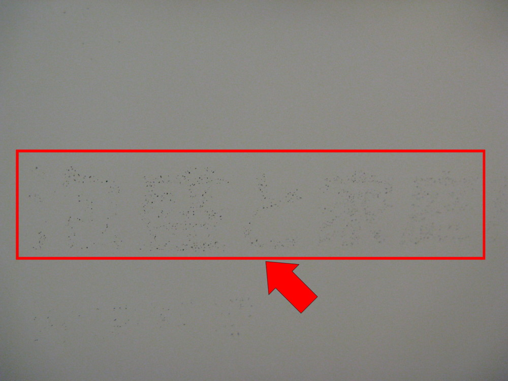 f:id:takerunba:20091126124720j:image:w500