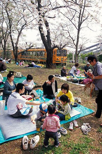 070504芦野公園の花見