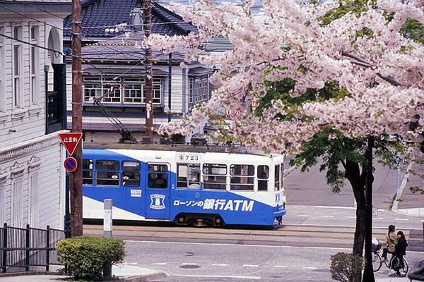 070506大三坂の桜と函館市電