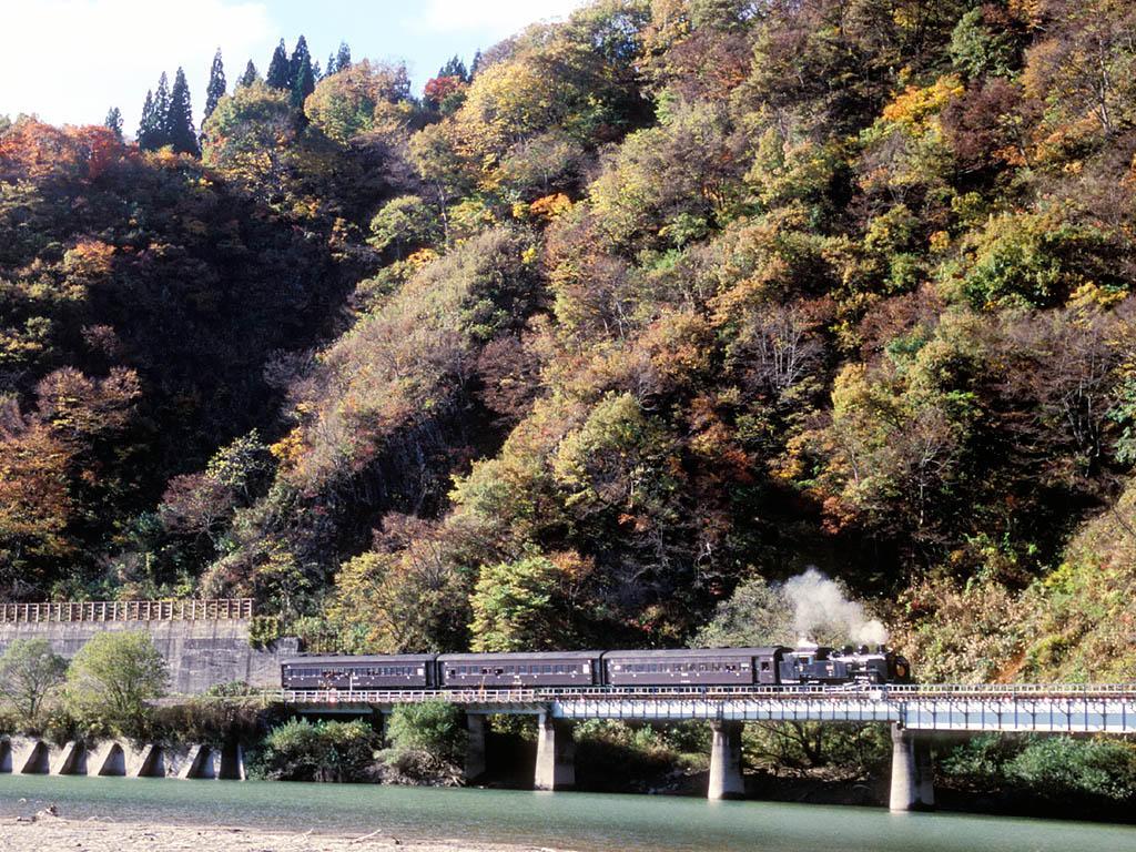 071103第八只見川橋梁手前の上りSL