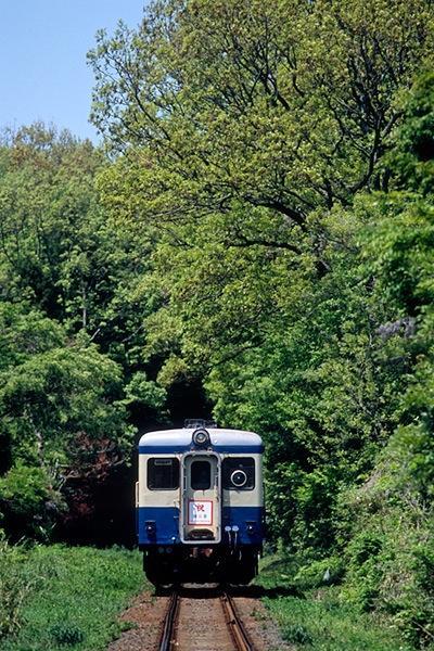 080506国鉄色と緑のトンネル