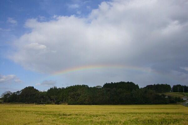 080927 品井沼の虹