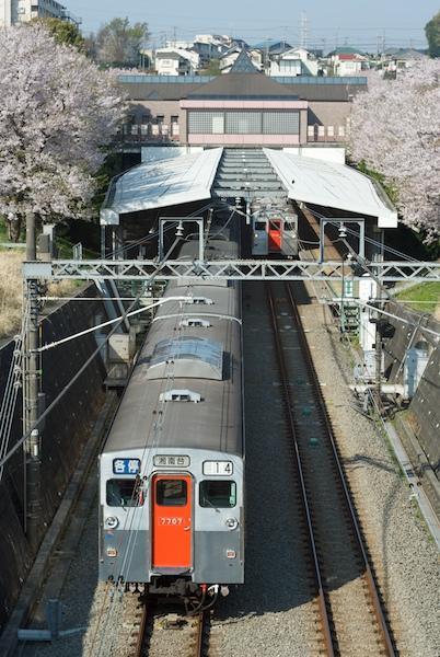 090408 桜の弥生台で顔を合わせた7000系