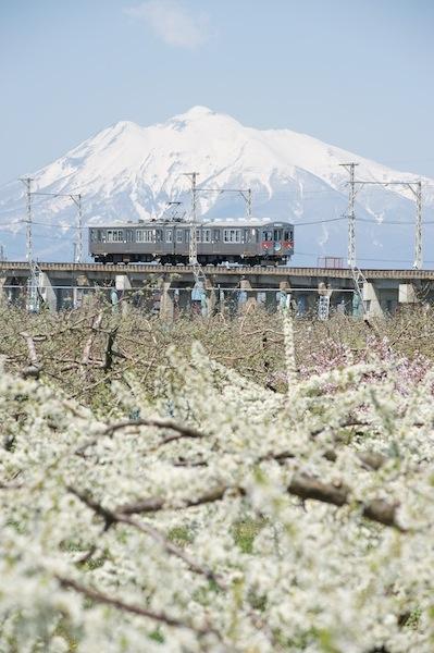 090429 岩木山、林檎の花と弘南鉄道