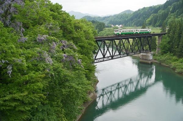 090524 藤の花と第七只見川橋梁