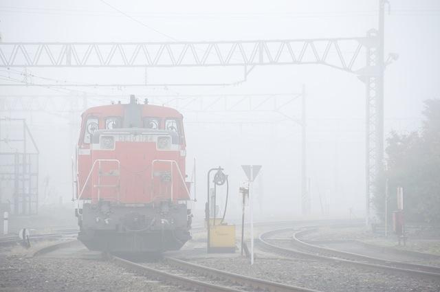 091101 霧の中に休むDE10