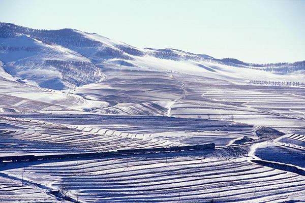 050101雪原の中を進む東風