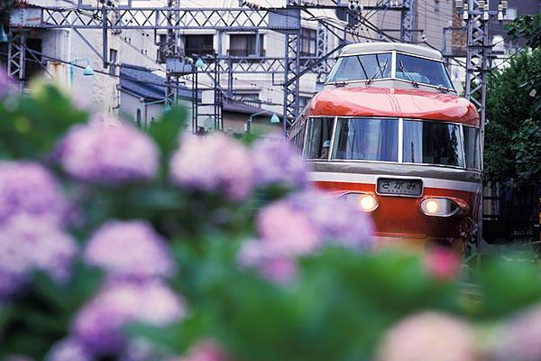 990627代々木八幡NSEと紫陽花
