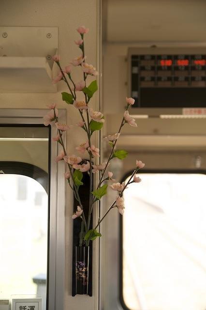 100503 メロス号に飾られた桜の造花