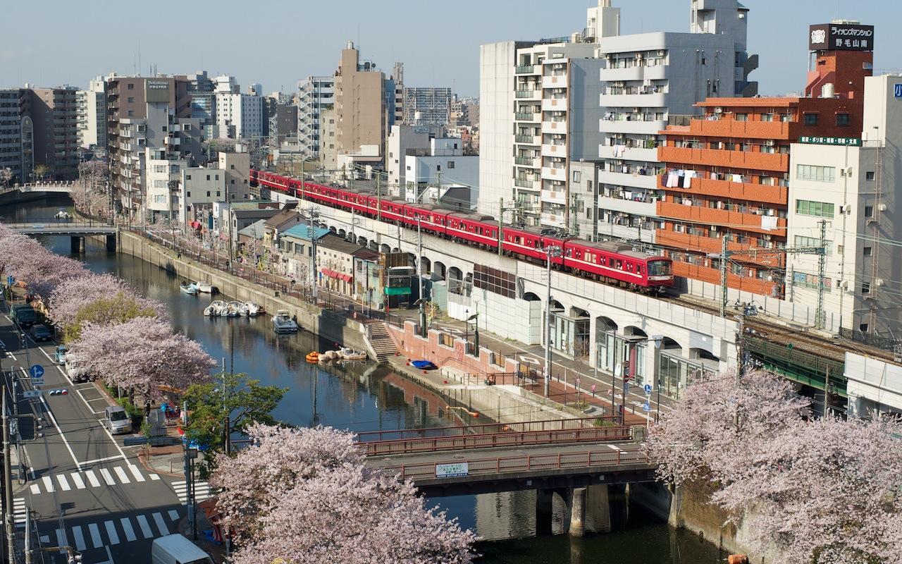100408 桜の大岡川沿いを走る京浜急行