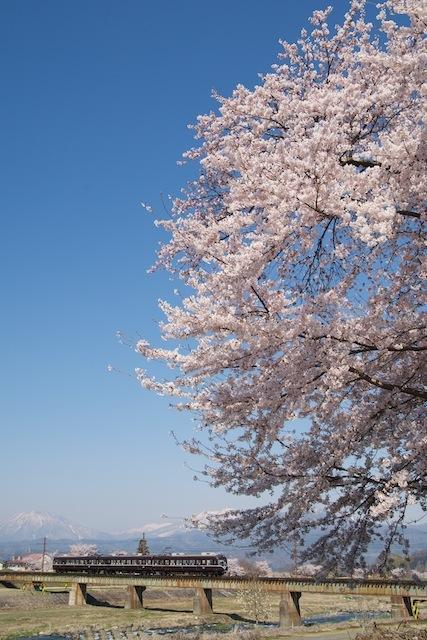 100425 夜間瀬川右岸の桜と2000系A編成