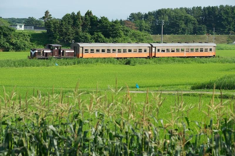 120804 トウモロコシと津鉄客車列車