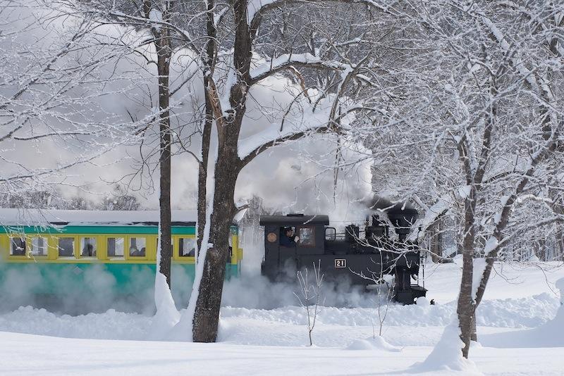 121215 木立の中を走る汽車