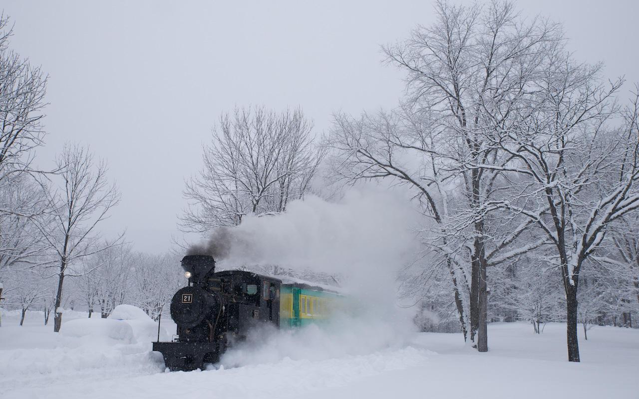 121216 雪の林を抜ける雨宮21号