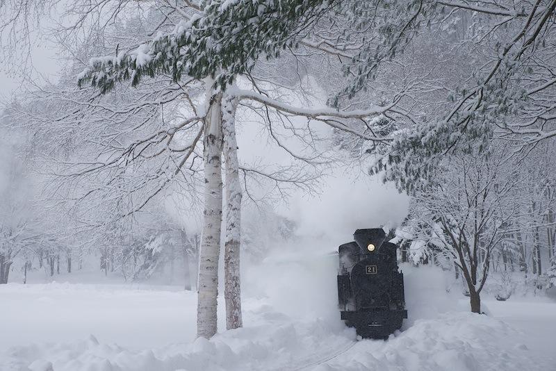 121216 白樺と蒸気機関車