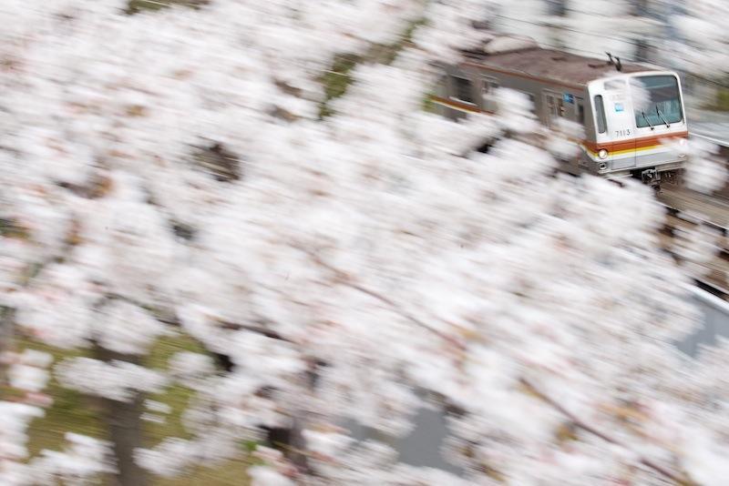 130323 桜の向こうのメトロ7000