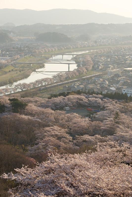 140412 船岡の桜と寝台特急北斗星