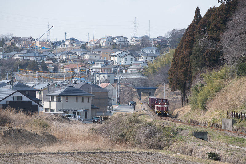 150314 泉の住宅地脇を走る貨物列車