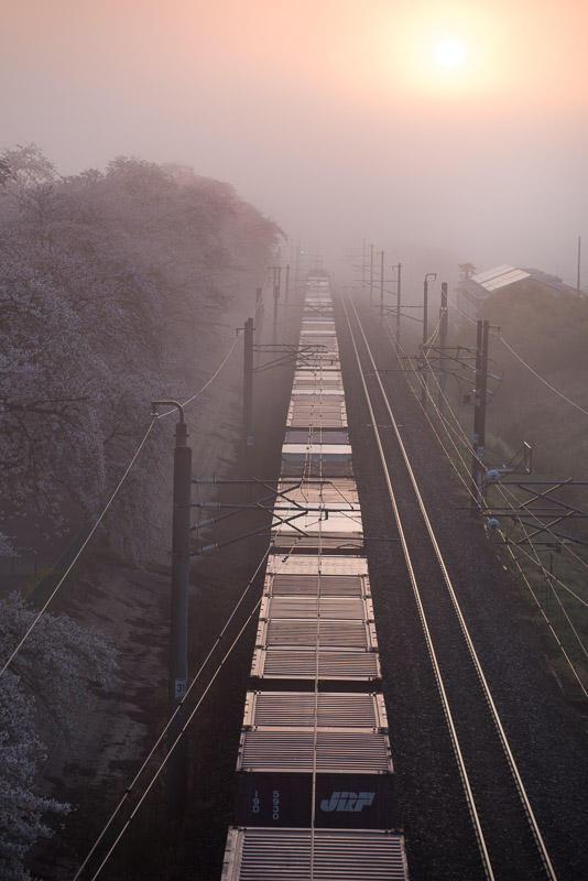 150412 日の出と貨物列車