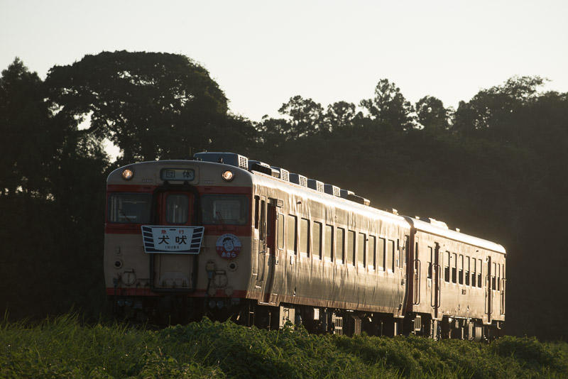 150822 夕日に輝く「伊勢海老特急・居酒屋列車」