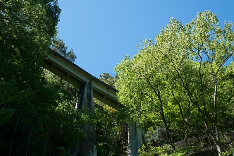 160504 国道から見上げる白鬚橋梁