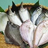 クール便 国安青果 鮮度抜群CAS冷凍品天然魚 宇和海朝獲れ鮮魚の「一夜干し8枚セット」(真鯛1枚、メイタカレイ1枚、アマダイ1枚、カマス2枚、釣アジ2枚、スミイカ1枚)
