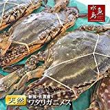 魚水島 新潟・佐渡産 天然 ワタリガニ 渡り蟹 メス 特大5杯