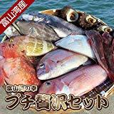 漁師直送! 富山湾の幸詰め合わせプチ贅沢セット 漁師厳選